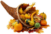 Photo of a beautiful cornucopia. - Flying Blind, LLC Online Store